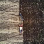 Спутниковый мониторинг сельских угодий запустят в Подмосковье