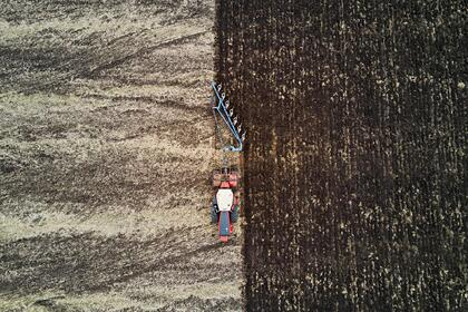 Спутниковый мониторинг сельхозугодий запустят в Подмосковье